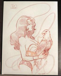 Wonder Woman Sara